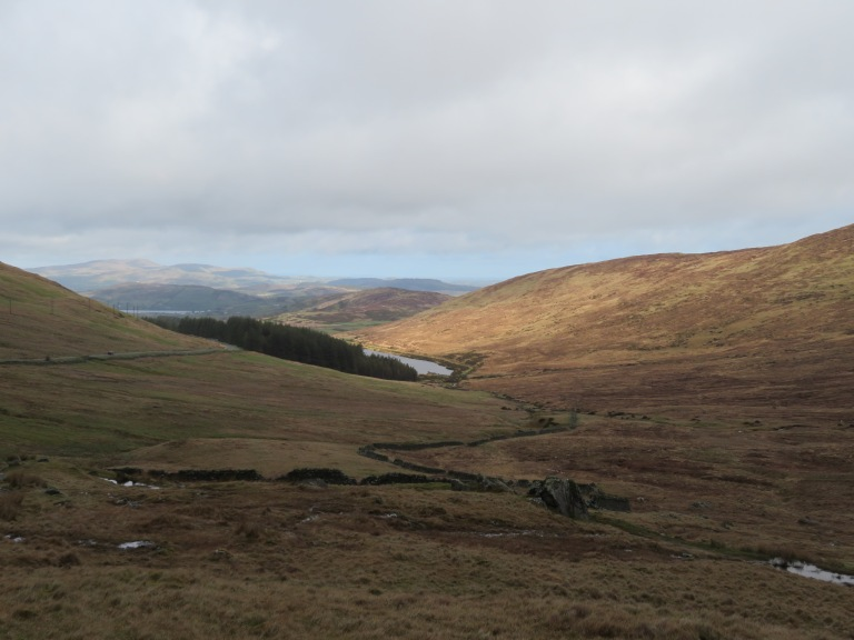 View from Ott Track to Fofanny Reservoir