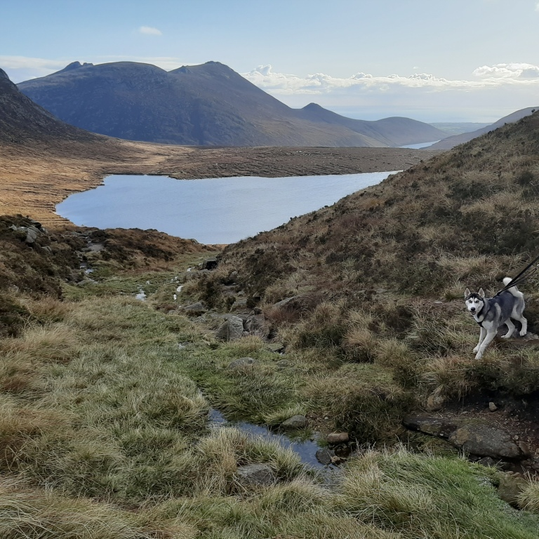 Kai at Lough Shannagh